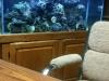 Office tank, 75 Gal. reef
