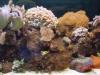 280 Reef